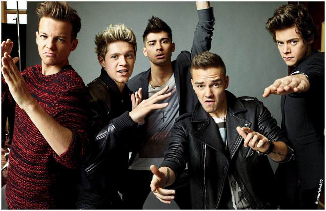 one-direction-2013-one-direction-35148988-2014-1308
